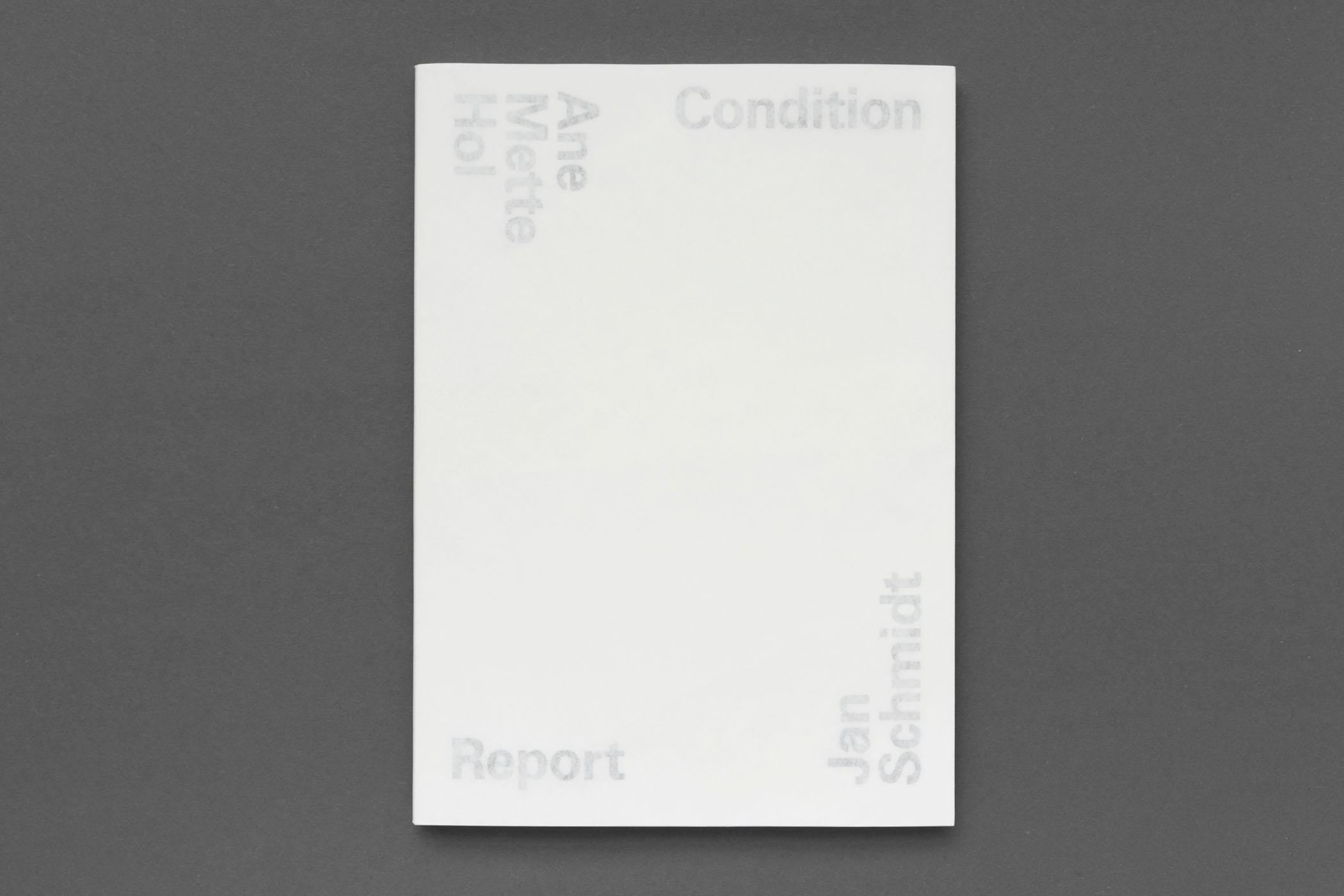 Ane Mette Hol, Jan Schmidt: Condition Report